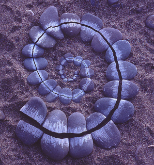 Andy Goldsworthy is a British artist of the current land art