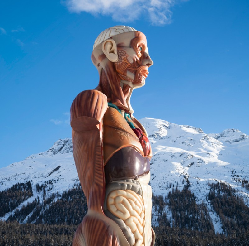 Damien Hirst, mental 'escapology'. FOTO: damienhirst-stmoritz.com