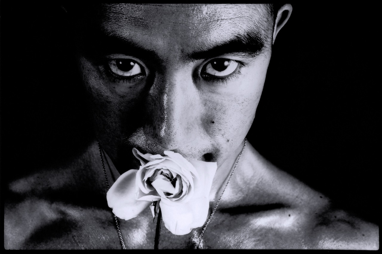 Yukio Mishima, Iaponica bellandum.