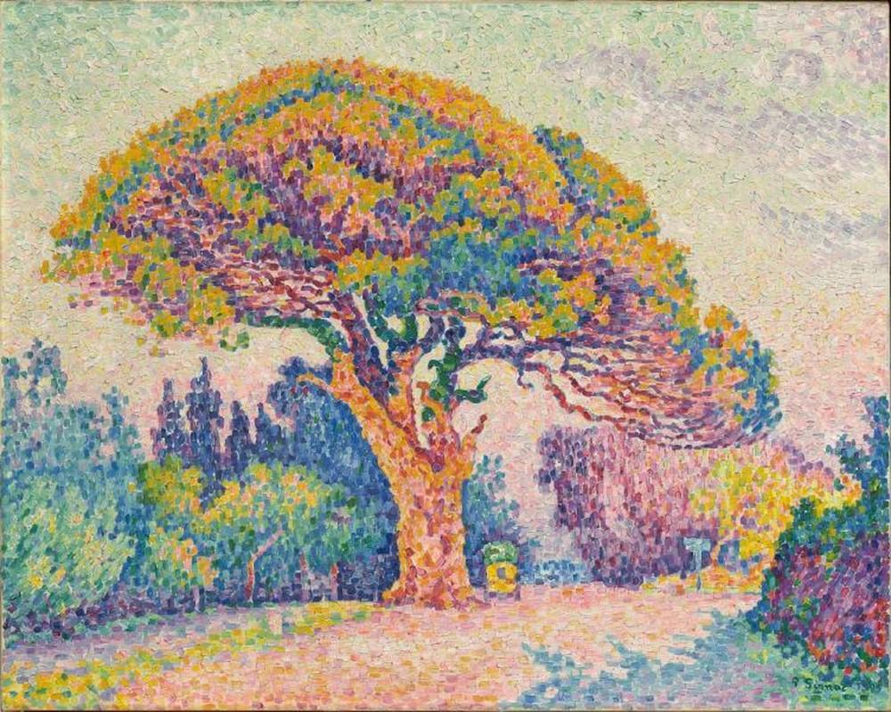 A fenyőfa Saint Tropez-ben (1909). FOTÓ: Francisco Marroquín Egyetem