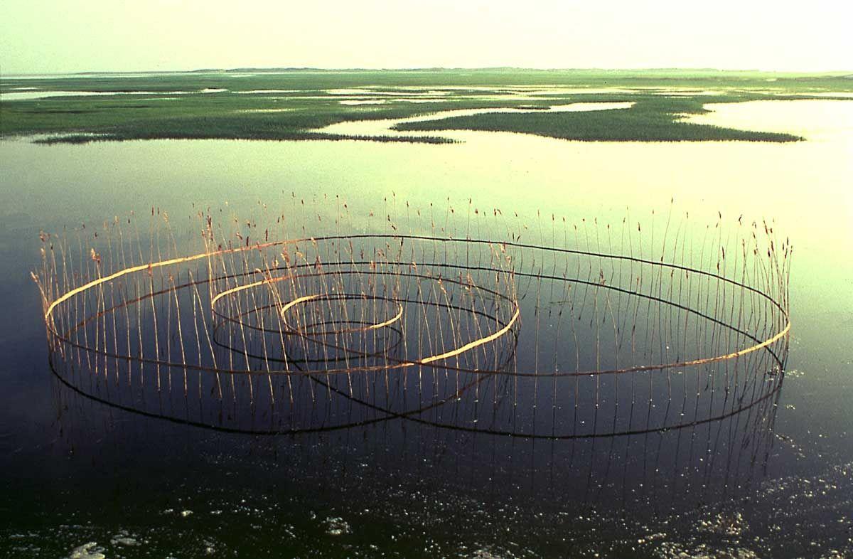Roy Staab földművészeti művész, aki installációkat hajt végre nyílt terekben