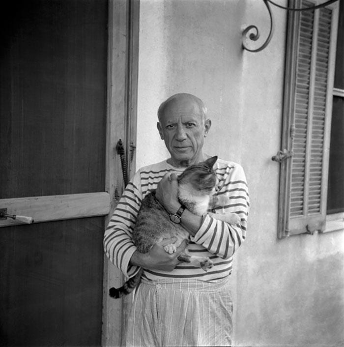 Katten, mysterieuze inspiratie van verschillende artiesten.