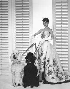 Γυναίκες και σκύλοι Φωτογραφία από pinterest.com