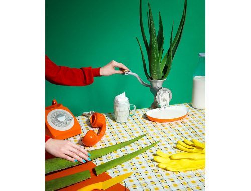 Mesa con teléfono naranja, maceta, sábila y guantes amarillos.
