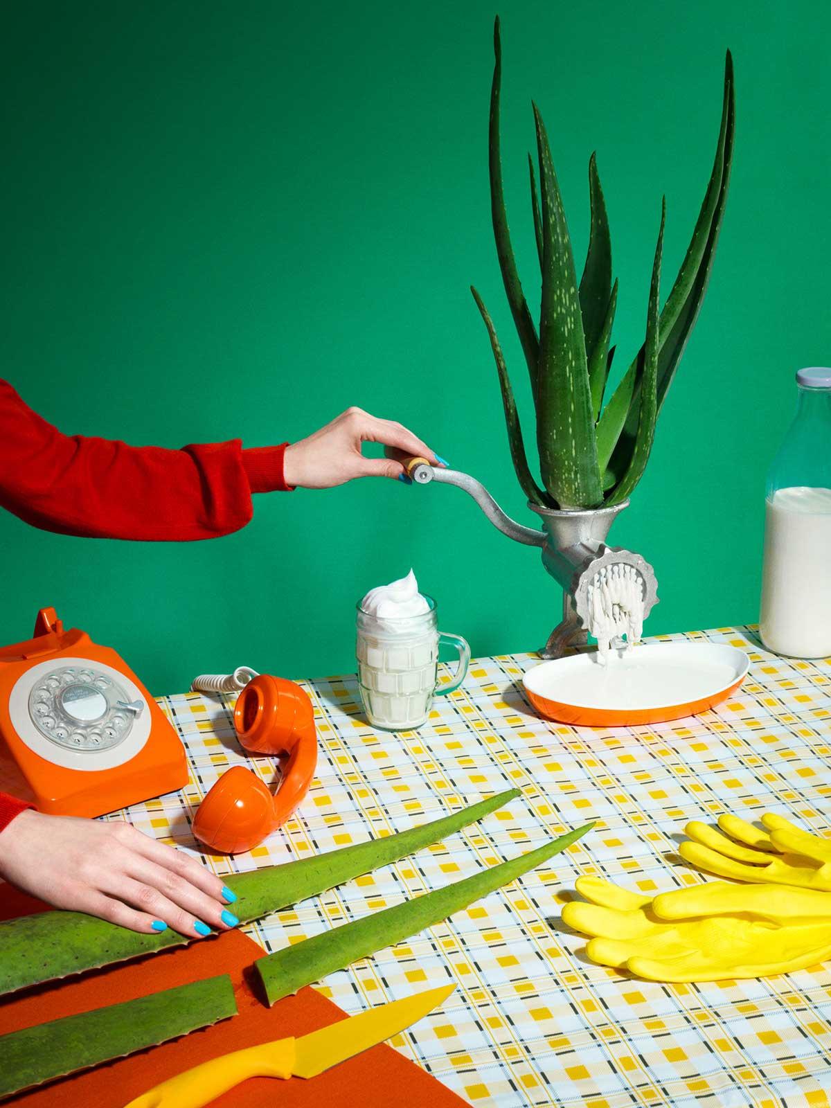 Mesa con maceta, envase de leche, teléfono y guantes.