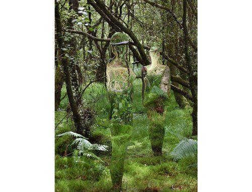 Weerspiegeling van twee mensen in het midden van bomen en gras.