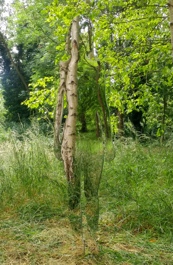 Weerspiegeling van vrouw met groene struiken en bomen.