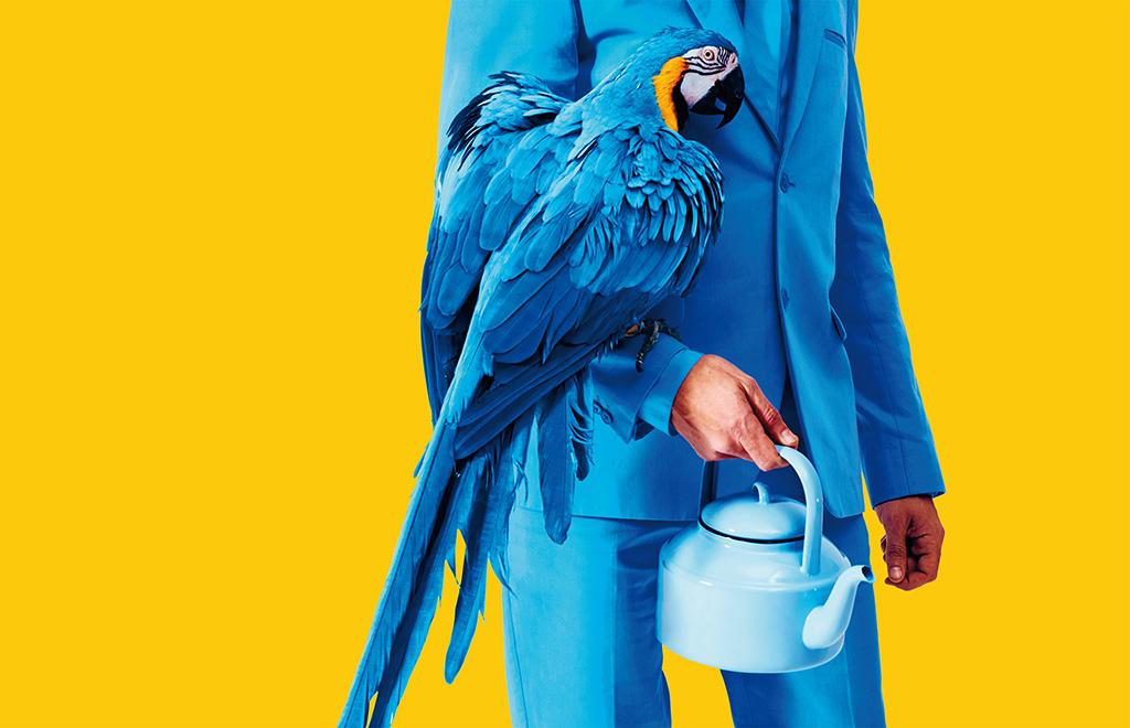 Εικονογράφηση του ανθρώπου σε μπλε κοστούμι με πουλί στο αντιβράχιο του.