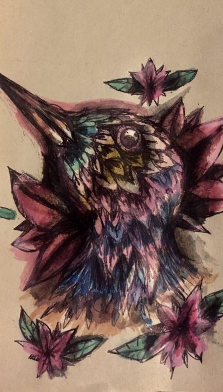 testa di colibrì