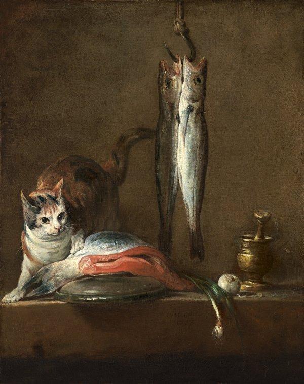 kat op tafel
