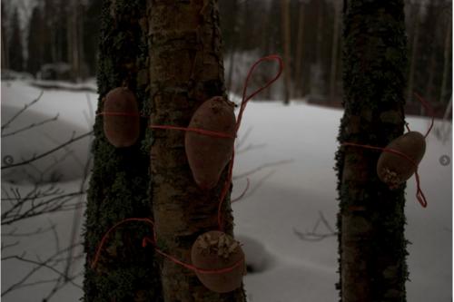 बर्फ के साथ जंगल में लकड़ी की चड्डी