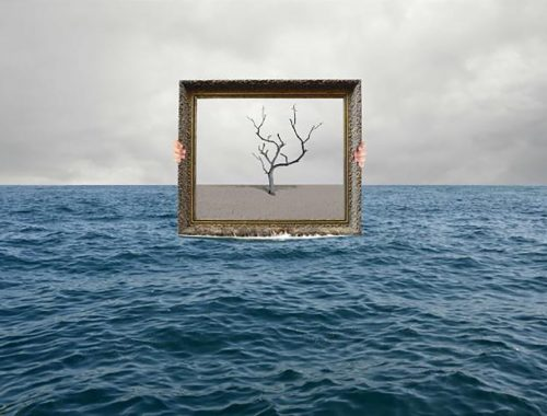 Cuadro de rama en el mar