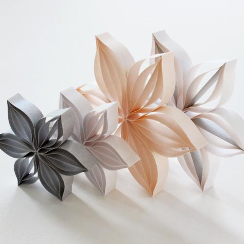 blomster forskjellige størrelser 3D papir kunst JUDiTH + ROLFE