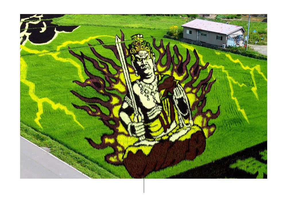Het Tanbo Art-festival wordt elk jaar gehouden