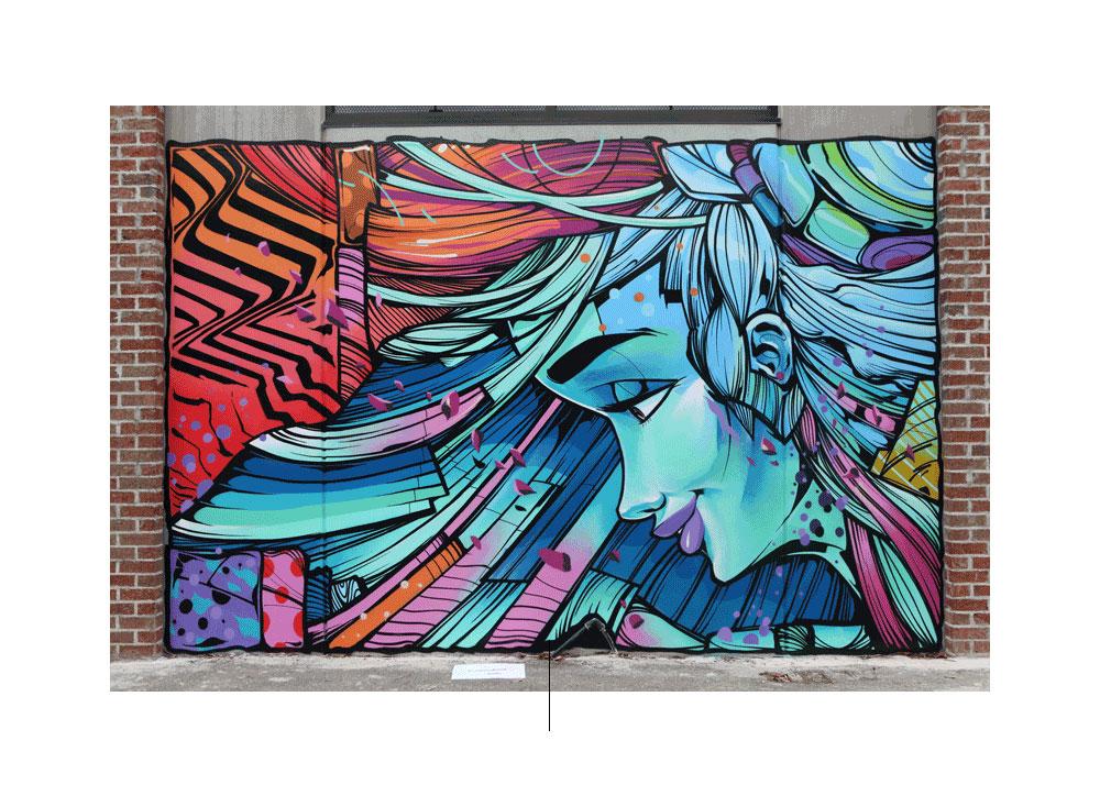الكتابة على الجدران للفنان Sofles مع وجه امرأة