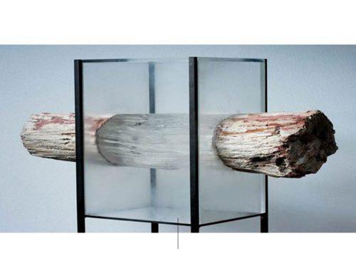Lars di legno trasparente berglund