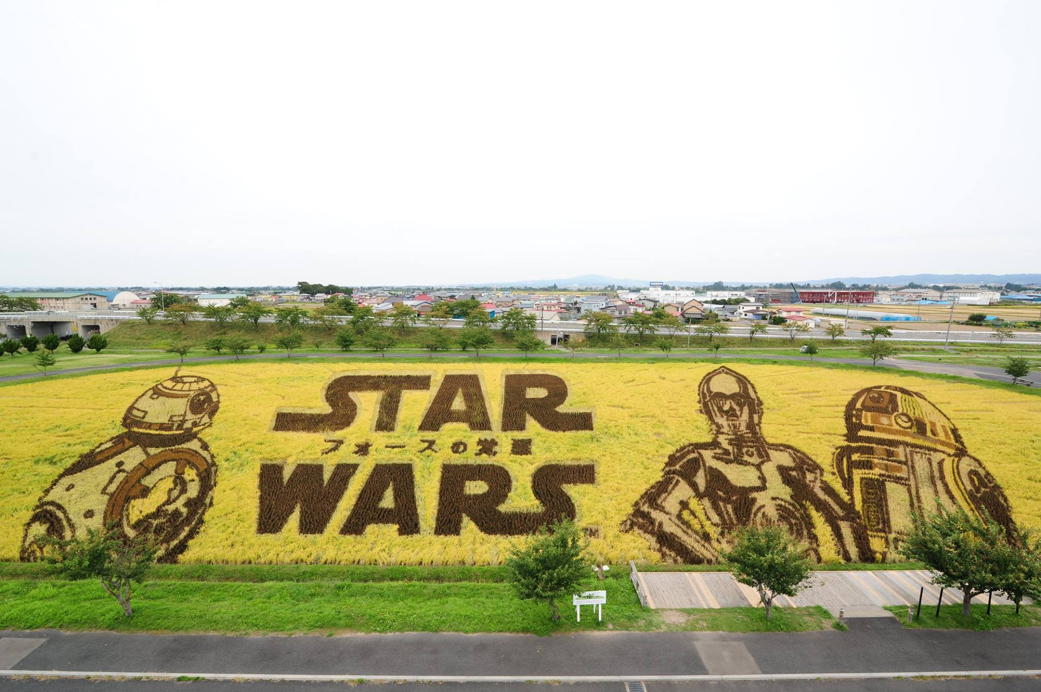 Star Wars hecho con Tanbo Art