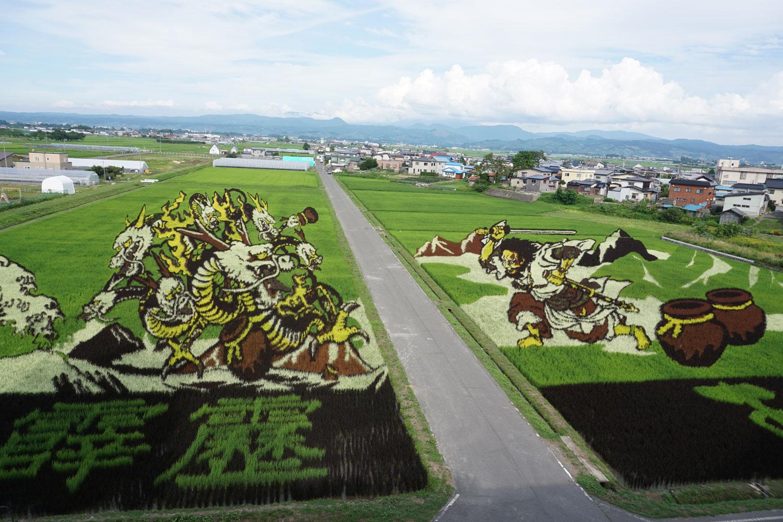 Τα έργα της Tanbo Art γίνονται με λουλούδια ρυζιού σε μια βίλα στην Ιαπωνία