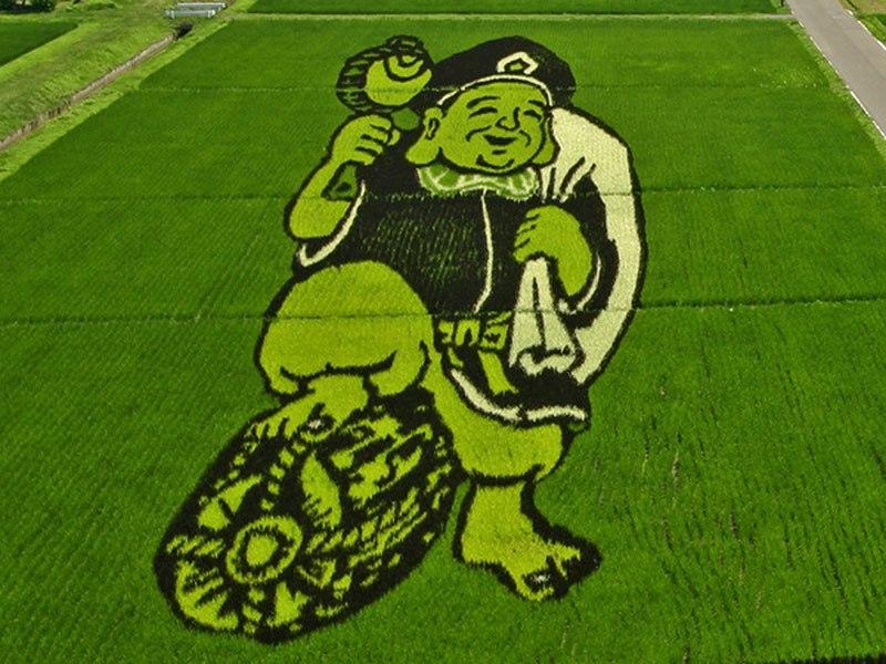 Έργα τέχνης που φυτρώνουν στα χωράφια του ιαπωνικού χωριού Inakadate