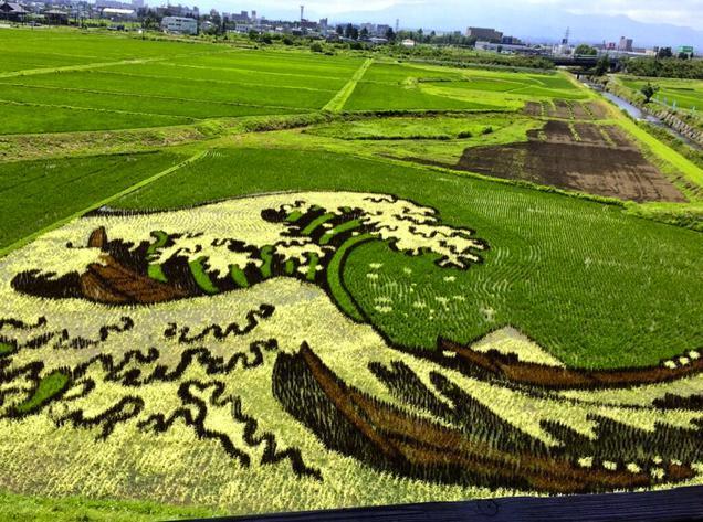 Τα περίφημα έργα της τέχνης Tanbo επισκέπτονται κάθε χρόνο χιλιάδες άνθρωποι