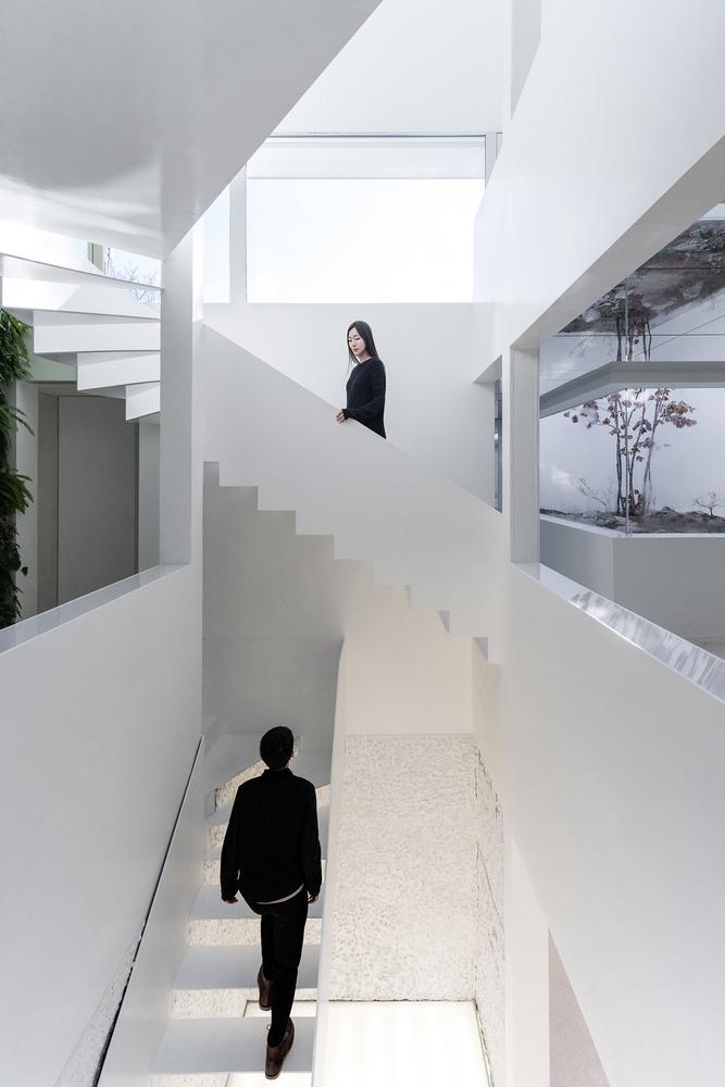 Los espacios se transforman en el jardín de los espejos