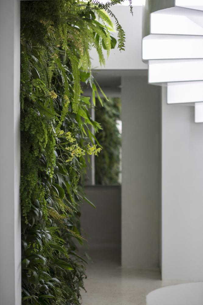 Jardines verticales en la boutique de espejos