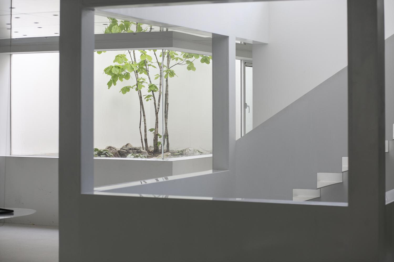 Exteriores e interiores se conectan en el jardín de espejos