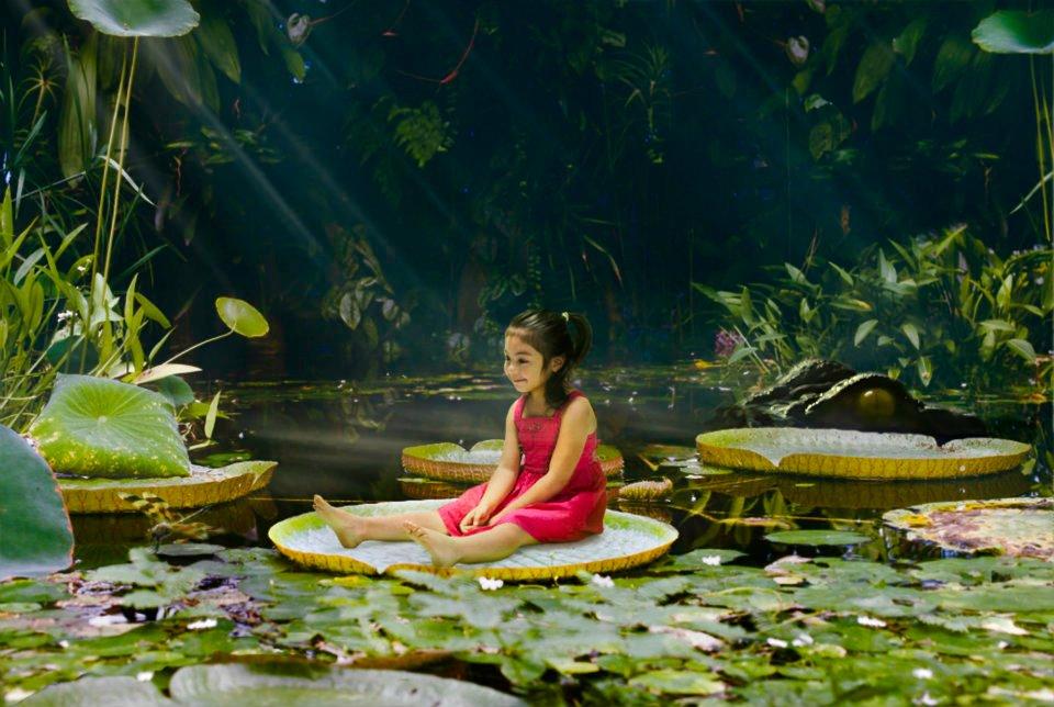 De compositie is belangrijk in de fotografie van Kristina Varaksina