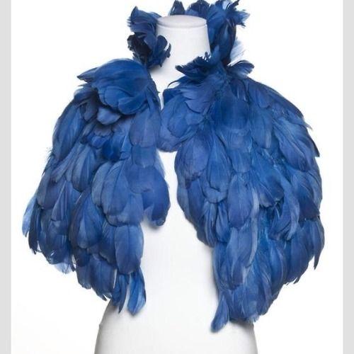 La gama de colores en cuanto a plumas es rica