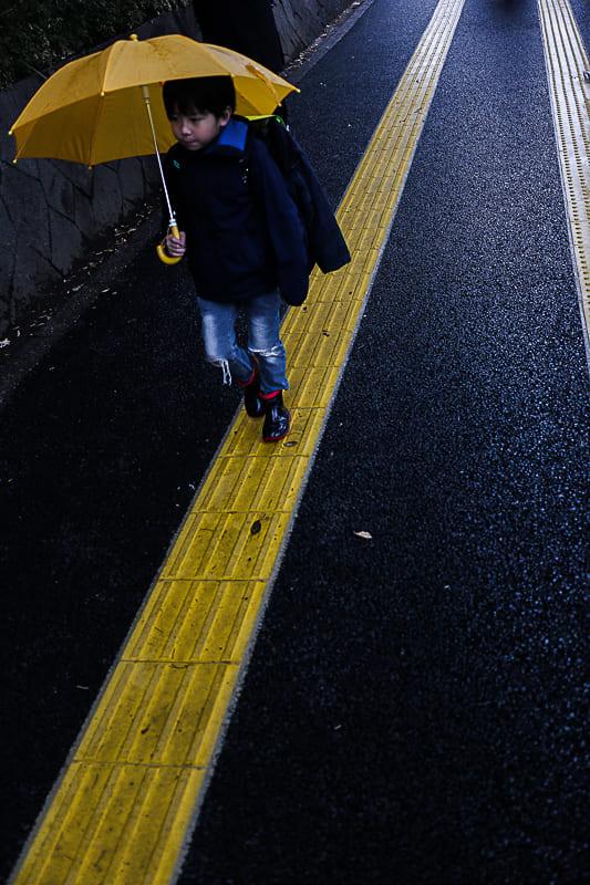 Contrasterende kleuren in de afbeeldingen van José Luna