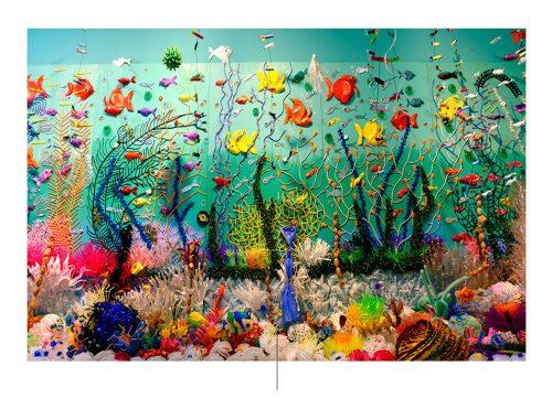 Arrecife de plástico de federico Uribe. Foto: Federico Uribe