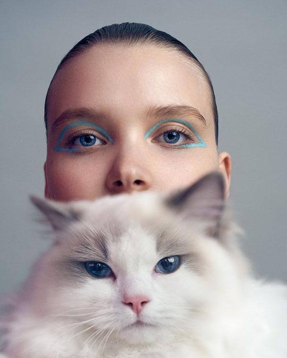 Cat ogen. Foto: Xiao Wei Xu