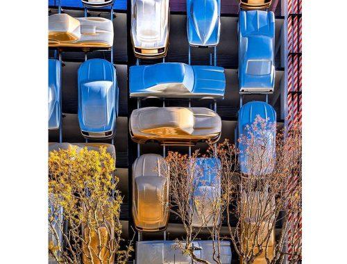 Αρχιτέκτονες γαρύφαλλου. Φωτογραφία από: FB @ clavelarquitectos