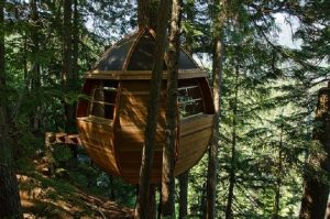 Tree house. Photo by: naturalhomes.org