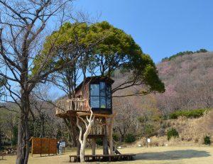 Treehouses. Photo: designboom.com