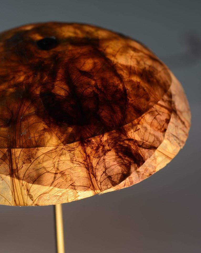 Veggie Lights Foto av: nirmeiri.com
