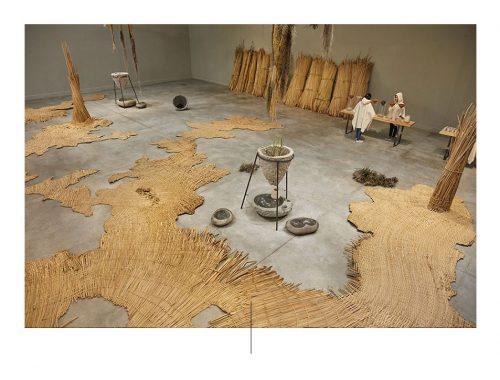 जल पारिस्थितिकी तंत्र फोटो: कलाकारों के सौजन्य से