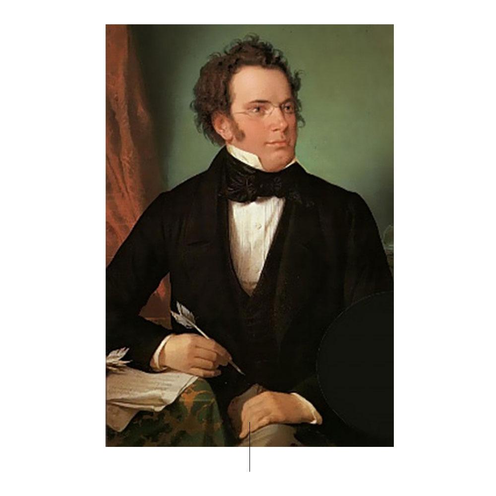 WA Rieder創作的Franz Schubert