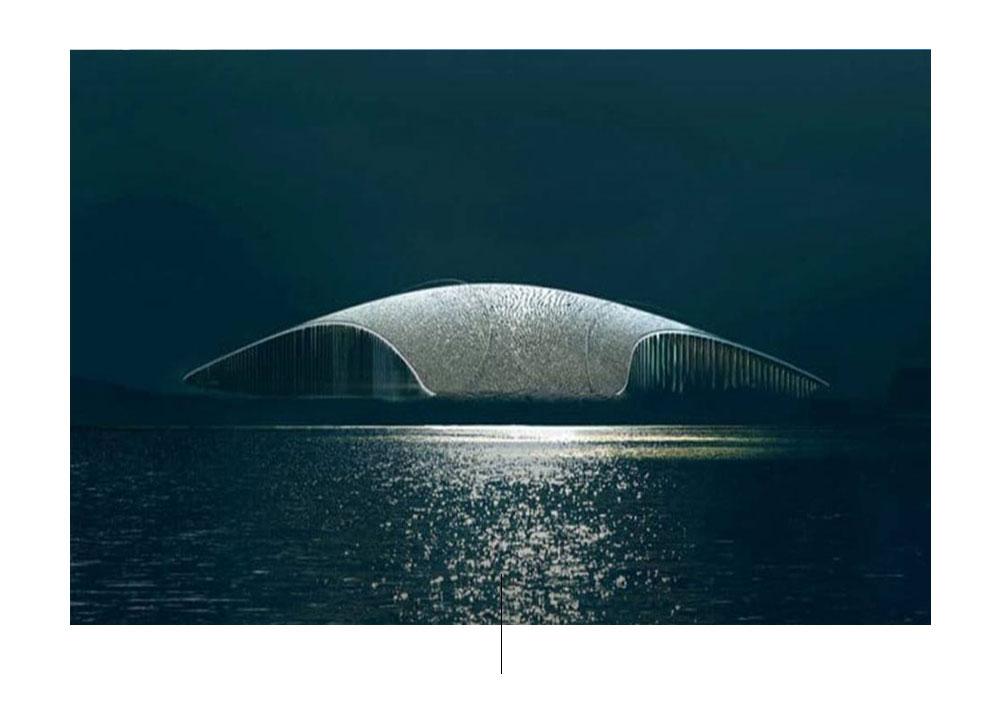 Whale. Foto de: pinterest.com