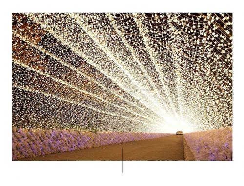 Πάρκο Ναμπάνα Όχι Σάτο. Φωτογραφία από: pinterest.com